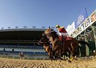 Woodbine Permitted to Drop 11 Thursday Cards