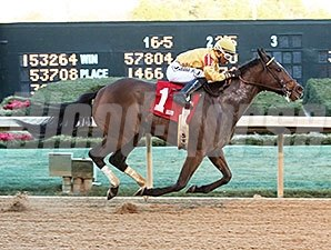 Apropos won the American Beauty Stakes at Oaklawn in January.