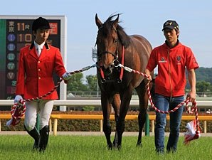 Lord Kanaloa is JRA Horse of the Year