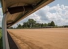 Keeneland Dirt Installation July 21, 2014