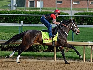 Ride On Curlin Turns in Maintenance Breeze