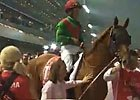Dubai World Cup: John Messara - Animal Kingdom