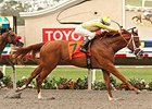 Best Pal Winner Skyway Returns for Futurity