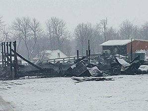 Eight Horses Die in Central KY Barn Fire