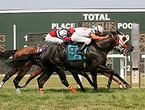Ben's Cat Claims Thrilling Parx Dash 3-Peat