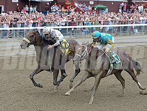 Mr. Z (inside) finished second to Big Trouble in the 2014 Sanford Stakes.
