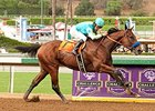 Mid-March Debut Can Work for American Pharoah
