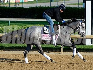 "In Tune <br><a target=""blank""http://photos.bloodhorse.com/TripleCrown/2014-Triple-Crown/Kentucky-Derby-Workouts/i-tH39Tb6"">Order This Photo</a>"
