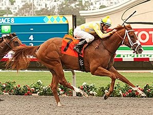 Skyway Gets Casse Started With Best Pal Win Bloodhorse Com