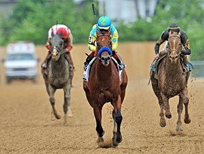 Zayat's Zee Bros Gears Up for Golden Shaheen