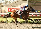 Record Breakers Headed for Del Mar Debutante