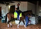 Kentucky Derby News Update for April 29, 2014