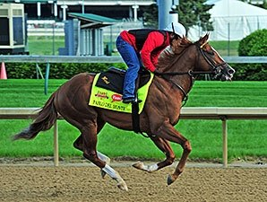 Will Speed Threaten 'Chrome' in Preakness?