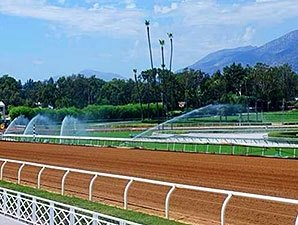 Santa Anita's Main Track to Reopen Sept. 2