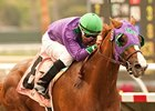 California Chrome to Run in Santa Anita Derby