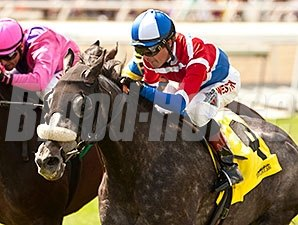 Fire With Fire won the 2014 San Luis Rey.