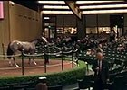 Keeneland Sept Yearling Sale: Day 2 Wrap