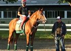 California Chrome Feature: Alan Sherman