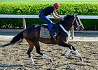 Ride On Curlin Returns Thursday at Oaklawn
