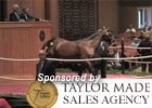 Fasig-Tipton July Yearling Sale Wrap-Up