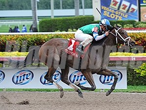 "Sweet Whiskey won the 2014 Old Hat Stakes. <br><a target=""blank""http://photos.bloodhorse.com/AtTheRaces-1/At-the-Races-2014/35724761_2vdnSX#!i=3005304950&k=9JPH6zc"">Order This Photo</a>"