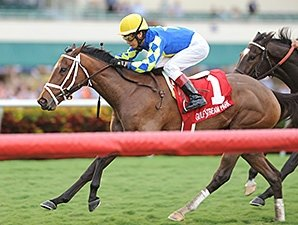 Candy Kitty Seeks Third Straight Stakes Win