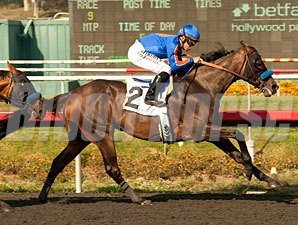 Game On Dude won the Gold Cup in 2012 and 2013 (shown) when it was run at Hollywood Park.