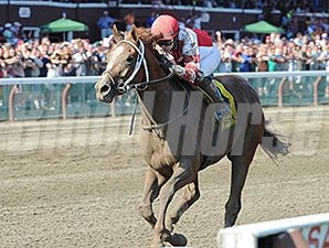 Coup de Grace won the Amsterdam Stakes on July 26 at Saratoga.