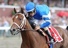 Travers Winner Alpha to Contest Suburban