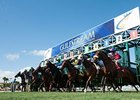 Gulfstream Tops in Florida Host-Track Race