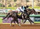 Shared Belief Goes Overland in Awesome Again