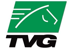 TVG: Record Handle for First Quarter