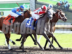 Ready to Act wins the Beaumont Stakes.