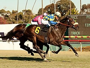 Lucayan Can Give Drysdale Sixth San Luis Rey