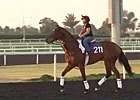 Dubai Carnival: March 6 Morning Training Session