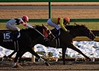 Upsetter Copano Rickey Rocks February Stakes