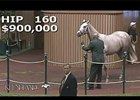 Keeneland September Sale 2014 - Hip 160