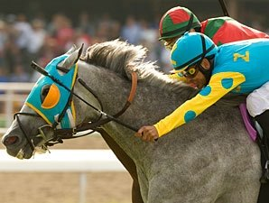 Grade I Winner Thorn Song Dies at Age 11