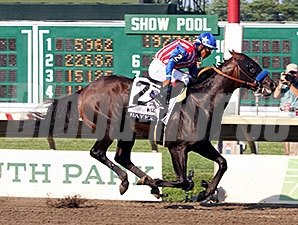 Haskell winner Bayern drew post 2 for the Travers.