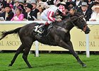 Sole Power Among 17 for Haydock's Sprint Cup
