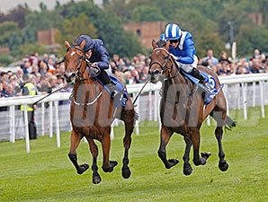 Tapestry runs away from Taghrooda to win the Yorkshire Oaks.