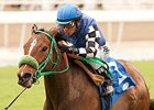 Stormy Lucy Tops Royal Heroine Field