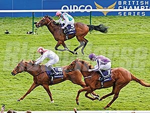 Australia (purple silks) finished third in the 2014 QIPCO Two Thousand Guineas.
