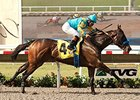 Jo Jo Warrior Helps Zayat Celebrate Birthday
