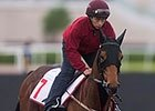 Dubai World Cup: John Moore