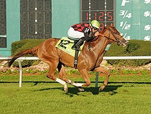 Testa Rossi Cruises in Florida Oaks Stretch