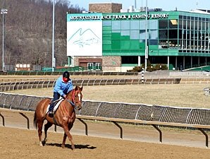 Live Racing Returns to Mountaineer Friday