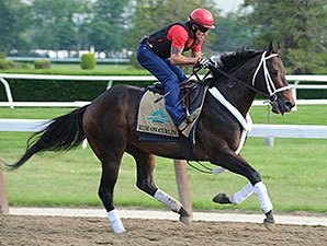 Eisaman Equine Grad Ride On Curlin Goes Far