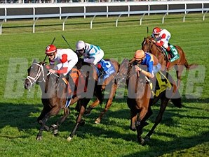 "Kitten's Dumplings won the 2013 Queen Elizabeth II Challenge Cup. <br><a target=""blank""http://photos.bloodhorse.com/AtTheRaces-1/at-the-races-2013/27257665_QgCqdh#!i=2828359755&k=D8SP3kf"">Order This Photo</a>"