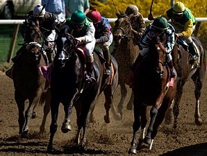 Bill Would Extend Equine Industry Tax Benefit